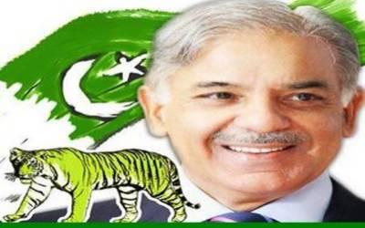 شہباز شریف تخت لاہور کو بچانے نکل پڑے