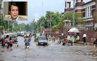 شہباز شریف نے لاہور کو پیرس کی بجائے ڈبن پورہ بنا دیا: پرویز الہی