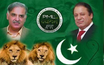 پاکستان کی بڑی سیاسی جماعت نے (ن )لیگ کی حمایت کا اعلان کردیا