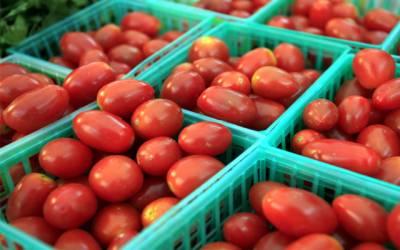 عید الاضحٰی سے پہلے ہی ٹماٹروں کے نخرے آسمان پر پہنچ گئے