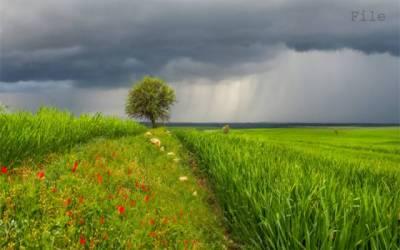 جشن آزادی پر موسم بھی جشن منائے گا، محکمہ موسمیات نےبڑی پیشگوئی کردی