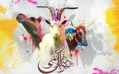 بڑی عید پر کتنی چھٹیاں؟ سرکاری نوٹیفکیشن جاری