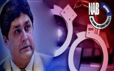آشیانہ سکینڈل میں فواد حسن فواد کی درخواست ضمانت پر سماعت