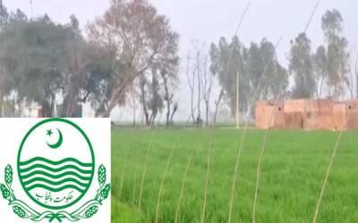 پنجاب گرین ڈویلپمنٹ منصوبے پر مثبت پیشرفت