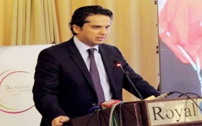 ''حمزہ شہباز کی گرفتاری حکومتی خواہش پرنہیں ہوئی''