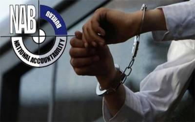 نیب نے تحریک انصاف کے اہم وزیر کو گرفتار کرلیا