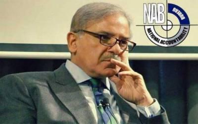 نیب نے شہباز شریف کی جائیدادوں کی خرید و فروخت پر پابندی لگا دی