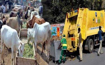 عید الاضحیٰ صفائی پلان، سڑکوں پر عرق گلاب کا سپرے ہوگا