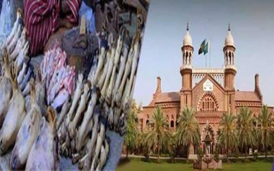 عید پر سری پائے بھوننے پر پابندی کا اقدام ہائیکورٹ میں چیلنج