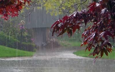 لاہور کے مختلف علاقوں میں تیز بارش، گرمی کا زور ٹوٹ گیا