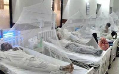 ڈینگی کے سینکڑوں مریضوں کی تشخیص نہ ہونے کا انکشاف