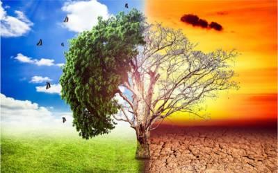 ماحولیاتی تبدیلیوں سے متعلق پالیسی تشکیل دینے کا اصولی فیصلہ