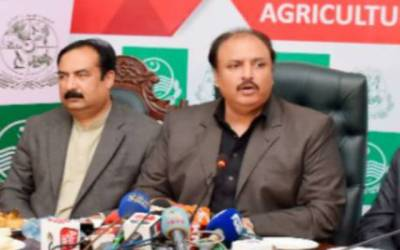 وزیر زراعت پنجاب سیڈ کارپوریشن ملازمین پر مہربان