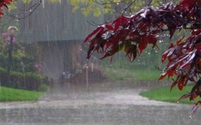 محکمہ موسمیات نے بارشوں کی پیشگوئی کردی