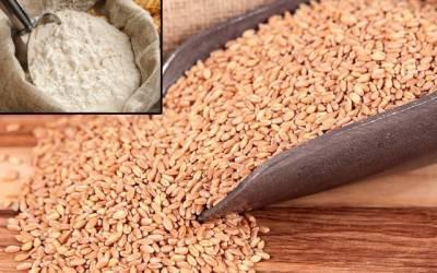 گندم کی قیمت میں بلاجواز اضافہ،فی کلو آٹابھی مہنگا