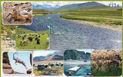 ملک میں 12 قومی پارکس بنانے کا فیصلہ