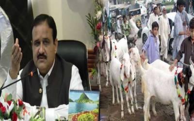 شہری حدود میں مویشیوں کی خریدو فروخت کرنیوالوں کی شامت، وزیراعلیٰ نے بڑا حکم دیدیا