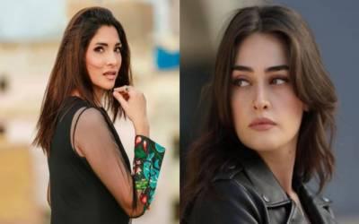 غیر معروف پاکستانی اداکار بھی حلیمہ سلطان کے مخالف بن گئے