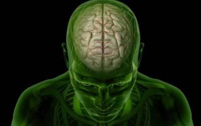 نوجوان کے دماغ میں 17سال سے پلنے والا کیڑا نکال لیا گیا