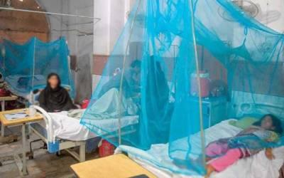 ڈینگی کا خطرہ برقرار، مریضوں کی تعداد میں اضافہ