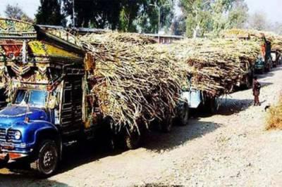 کسانوں کا استحصال بند،بروقت ادائیگیاں یقینی بنائیں