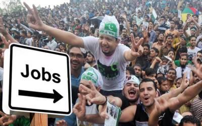 Jobs in Punjab