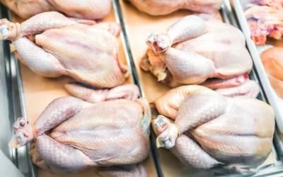 Chicken Price Decrease