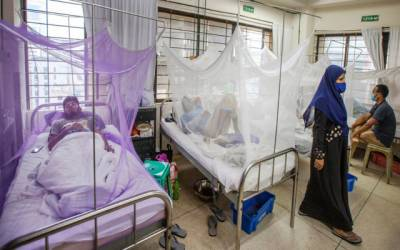 dengue fever cases in hospital