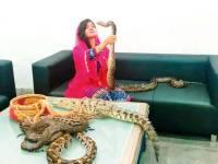 سانپ، مگر مچھ پالنے کا کیس، رابی پیر زادہ نے بریت کی درخواست دائر کر دی